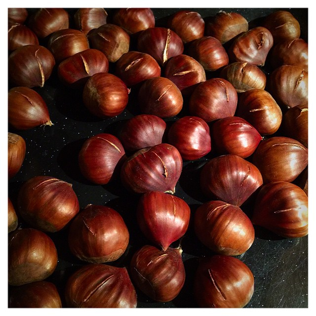 Last of the chestnuts!