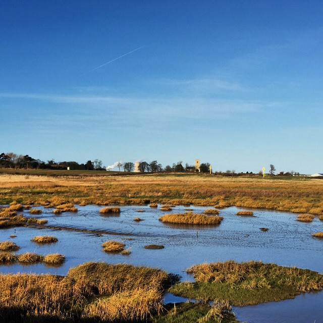 Holderness wetlands