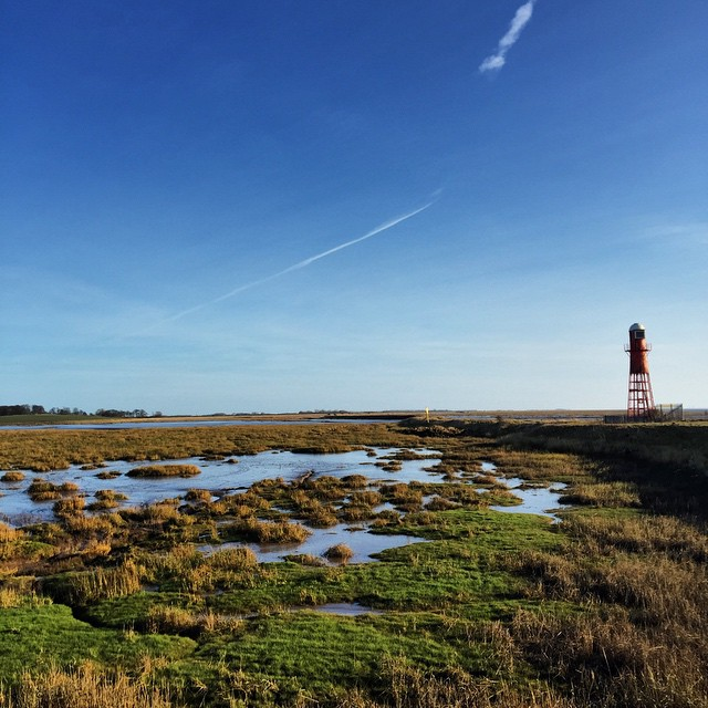 Holderness wetlands and wildlife reserve